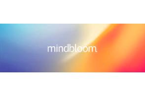 Head of Brand Marketing  MindBloom