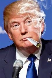 Trump Commutes A Dozen Incarcerated For Cannabis & One Full Pardon