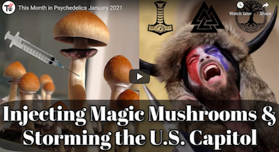 January 30 2021 – Think Wilder: This Month in Psychedelics January 2021