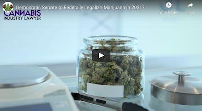 February 2 2021: Cannabis Legalization News: Democratic Senate to Federally Legalize Marijuana In 2021?