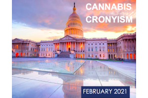 """New Report Published On Cannabis Corruption By The """"Government Accountability Institute"""""""