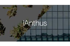 iAnthus receives $11M loan, go-ahead to finish New Jersey cannabis facility