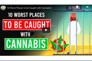 February 8 2021: 10 Worst Places to be Caught with Cannabis!