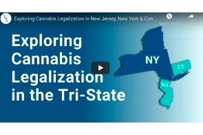 February 5 2021: Vincente Sederburg …. Exploring Cannabis Legalization in New Jersey, New York & Connecticut