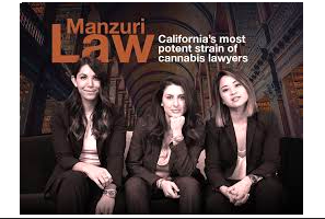 Manzuri Law: CA & LA Updates From The Firm – February 2021