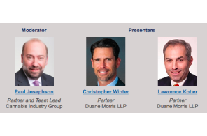 Duane Morris' Business Reorganization and Financial Restructuring Practice Group for a discussion on the workout process, especially the complexities involved for cannabis companies