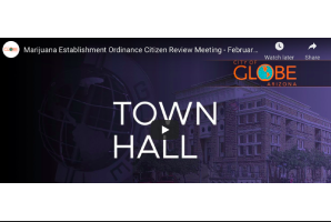 10 February 2021: City of Globe Arizona: Marijuana Establishment Ordinance Citizen Review Meeting