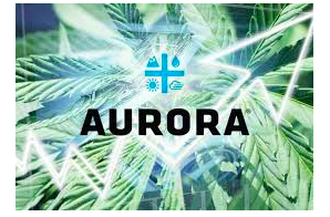 Aurora Cannabis is looking for an IS Compliance Specialist