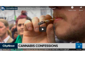 February 12 2021: Cannabis confessions: How many Canadians smoke pot?