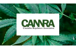 Cannabis Regulators Association Pressure DC To Move On Specific Issues