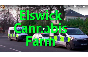 February 19 2021: UK – Newcastle On Tyne – Elswick Cannabis Farm Busted