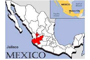 Mexico:  State of Jalisco Looks At Bill To Regulate Industrial Hemp