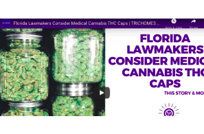 February 23 2021:  Florida Lawmakers Consider Medical Cannabis THC Caps | TRICHOMES Morning Buzz