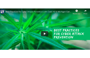 February 24 2021: Best Practices for Cyber Attack Prevention with Clark Hill & Michigan Cannabis Industry Association