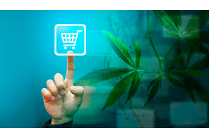 Safety Ensured with Online Dispensary Canada