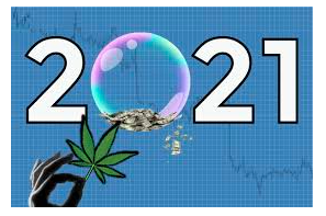 The Forecast for Cannabis Reform in 2021: What You Can Expect