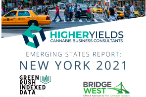 Publication: March 2021 Emerging States Report: New York 2021