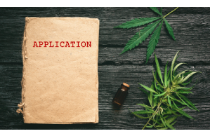 Webinar: Pre-Cannabis License Application Strategies
