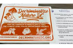 Magic Mushrooms Are Decriminalized in DC as of 15 March 2021