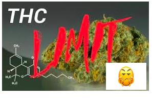 Florida Survey: 76% of respondents support medical marijuana. Just 24% want limits on THC.