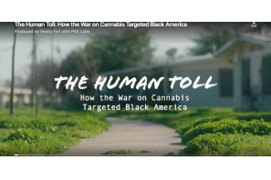 Vanity Fair:  The Human Toll: How the War on Cannabis Targeted Black America