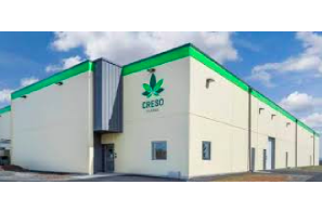 Press Release – Australia:  Creso Pharma makes history as first ASX-listed psychedelics stock