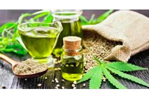 Differentiating: CBD, Hemp, and Marijuana