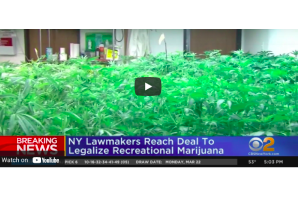 NY Lawmakers Reach Deal To Legalize Recreational Marijuana