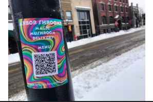 'Magic' mushroom delivery service advertising in Ann Arbor raises legal questions, officials say