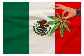 Mexico: Cannabis Regulation Delayed In The Senate – Has the pushback started ?