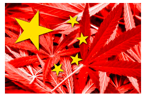 Is China About To Ban Industrial Hemp In Cosmetics ? – Hemp Company Shares Tumble On Local Exchange