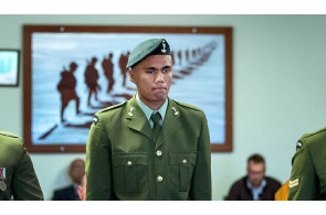 What Is It With Soldiers & LSD ? .. USA, UK & Now NZ