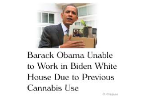 Politico Report Reveals That Biden Policy To Prior Cannabis  Not Just Confined To White House Staff