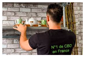 Newsweed France Article: Cannabis Social Clubs: Is France Ready?