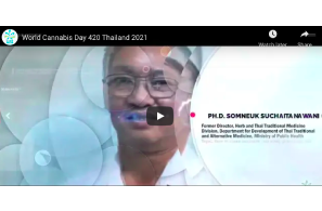 Event Thailand: World Cannabis Day 420 Thailand 2021 – Promo Video