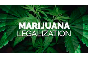 What are the Advantages of Legalizing Cannabis?