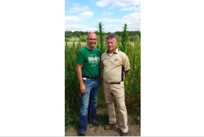 Stevia Corp U.S. officials say investments diverted to hemp companies were illegal
