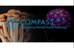 Compass Pathways: Legal Counsel (life sciences) clinical, regulatory, licensing New York