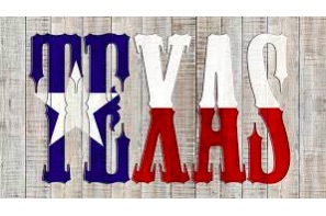 Marijuana Moment Reports On All The Latest Cannabis Committee Issues In Texas