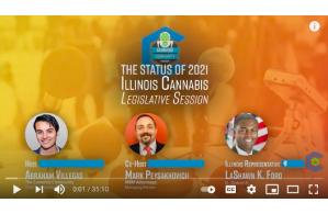 April 8 2021: The Status of 2021 Illinois Cannabis Legislative Session-The Cannabis Community Insider