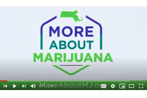 Massachusetts Control Commission: Dangers of Unlicensed and Untested Cannabis-vape Products – Video Series