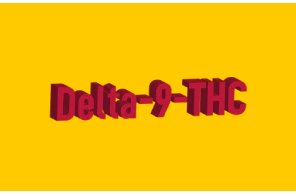 Article – Reality Sandwich: The Ultimate Guide To Delta 9 THC