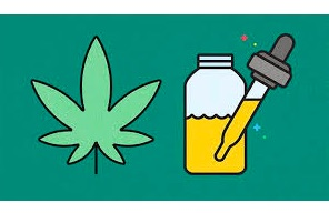 5 Facts You Need to Know Before Using CBD Oil