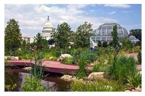 Washington DC – Reps Request US Botanic Garden Display Hemp Plants