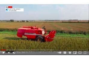 Ban on cultivating CBD oil from cannabis/hemp 'unfair' and 'insane', UK farmers say