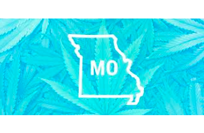 Missouri warns hundreds of cannabis non operating businesses of license revocation