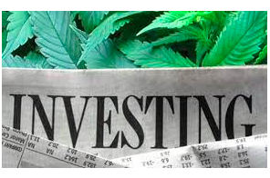 How to find cannabis investors quickly?