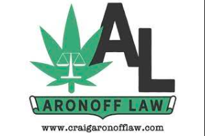 Associate Attorney Aronoff Law Royal Oak, MI 48067