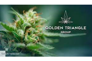 Thailand: Canna Care's stake in cannabis researcher GTG approved in principle