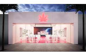 Corporate Attorney Neptune Cannabis Company Beverly Hills, CA 90211